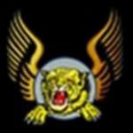 airtigers logo
