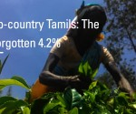 Up-Country Tamils