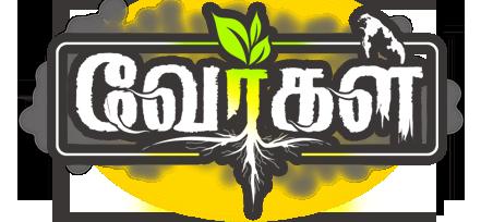 wths-logo